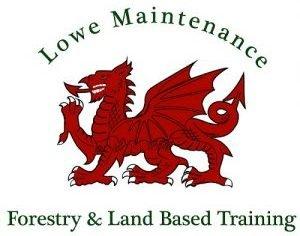 Lowe Maintenance Logo