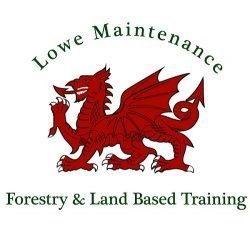 Lowe Maintenance Logo