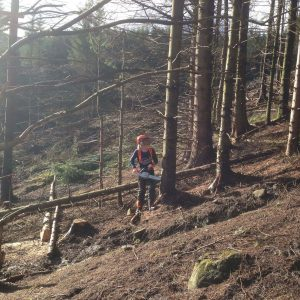 Chainsaw maintenance, cross cutting and felling trees upto 380mm CS30-31 training course
