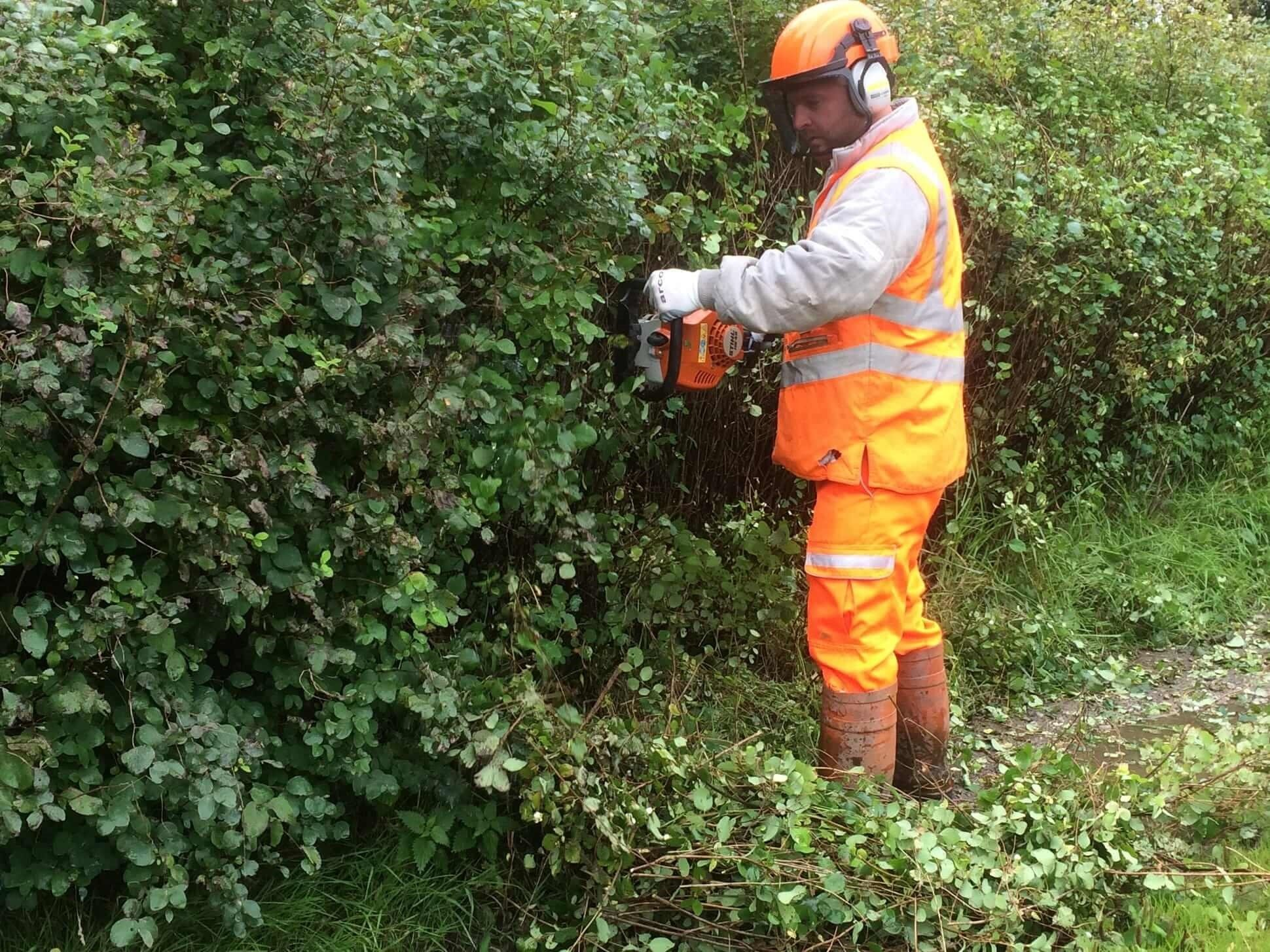 Lowe-Maintenance-Handheld-Hedge-Cutter-Integrated