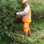 hedge cutter, hedge trimmer training course in North Yorkshire