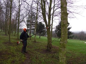 Powered Pole Pruner training courses North Yorkshire