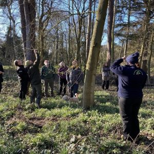 Lowe Maintenance Tree Survey and Inspection Course in North Yorkshire