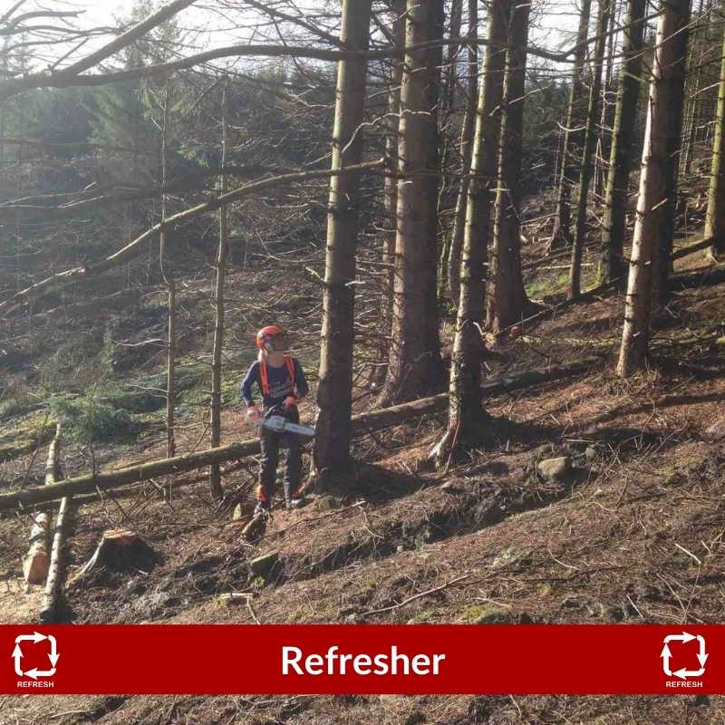 Refresher for Chainsaw maintenance, cross cutting and felling small trees upto 380mm CS30-31 training course North Yorkshire